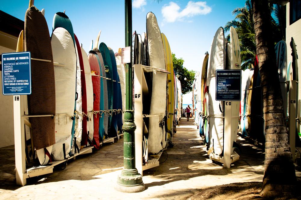 orbitz_waikiki surfing