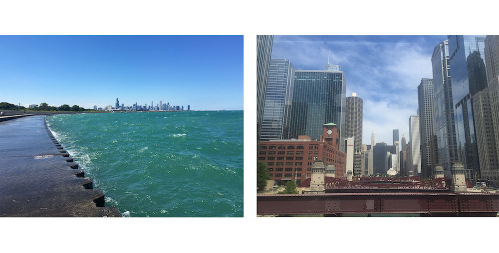 Left: Viewing the skyline from Jackson Park | Right: Viewing the skyline from the brown line el train