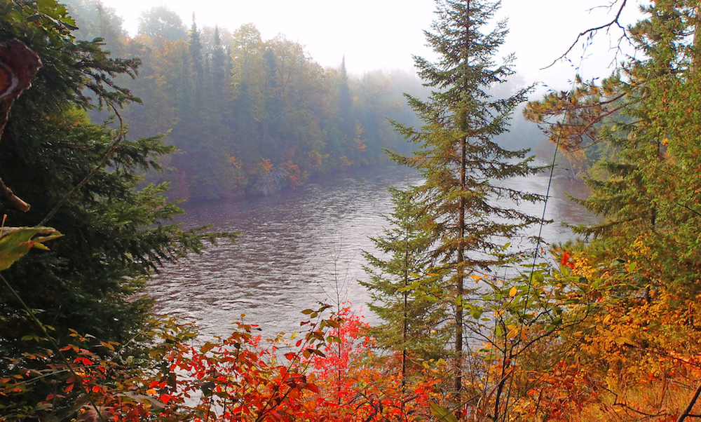 Huron Manistee National Forest, Michigan, fall-foliage