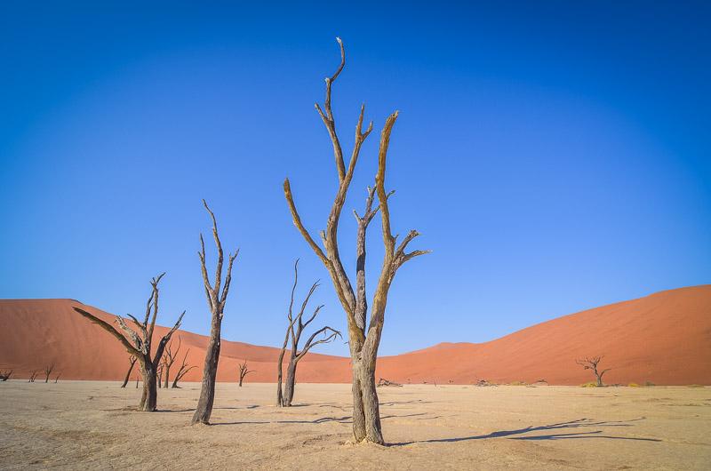 surreal-landscapes-gettingstamped-1-2