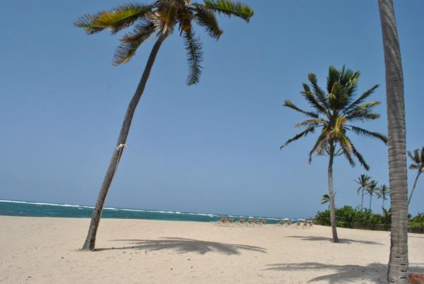 Nisbet Beach, courtesy of Rosalind Cummings-Yeates