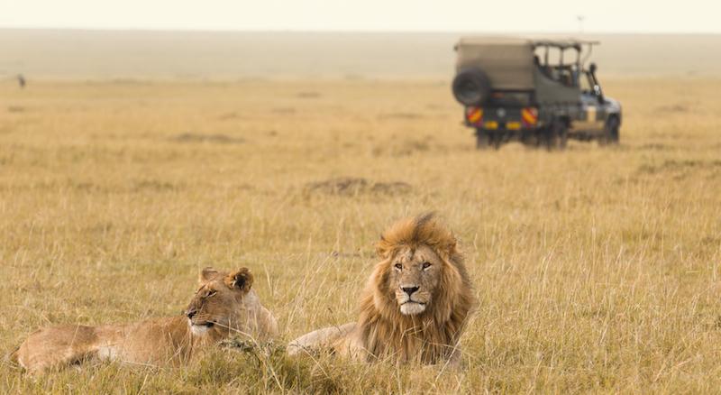 kenya-safari_free-nairobi-stopover