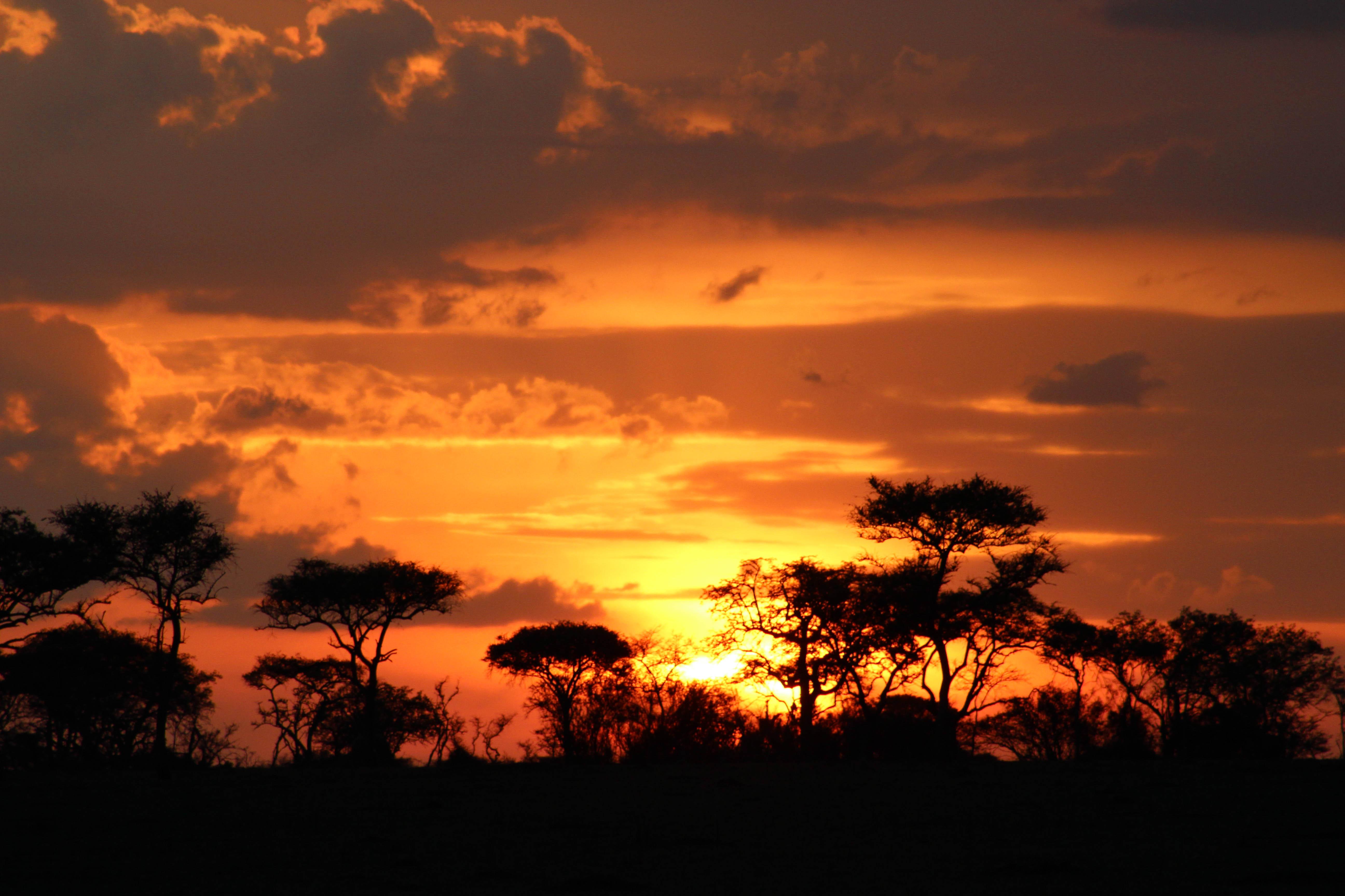 Tanzania Serengeti_CompassAndTwine