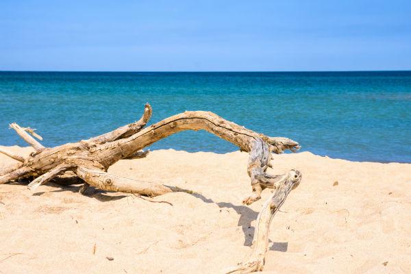 Indiana Dunes National Seashore, Indiana, beach