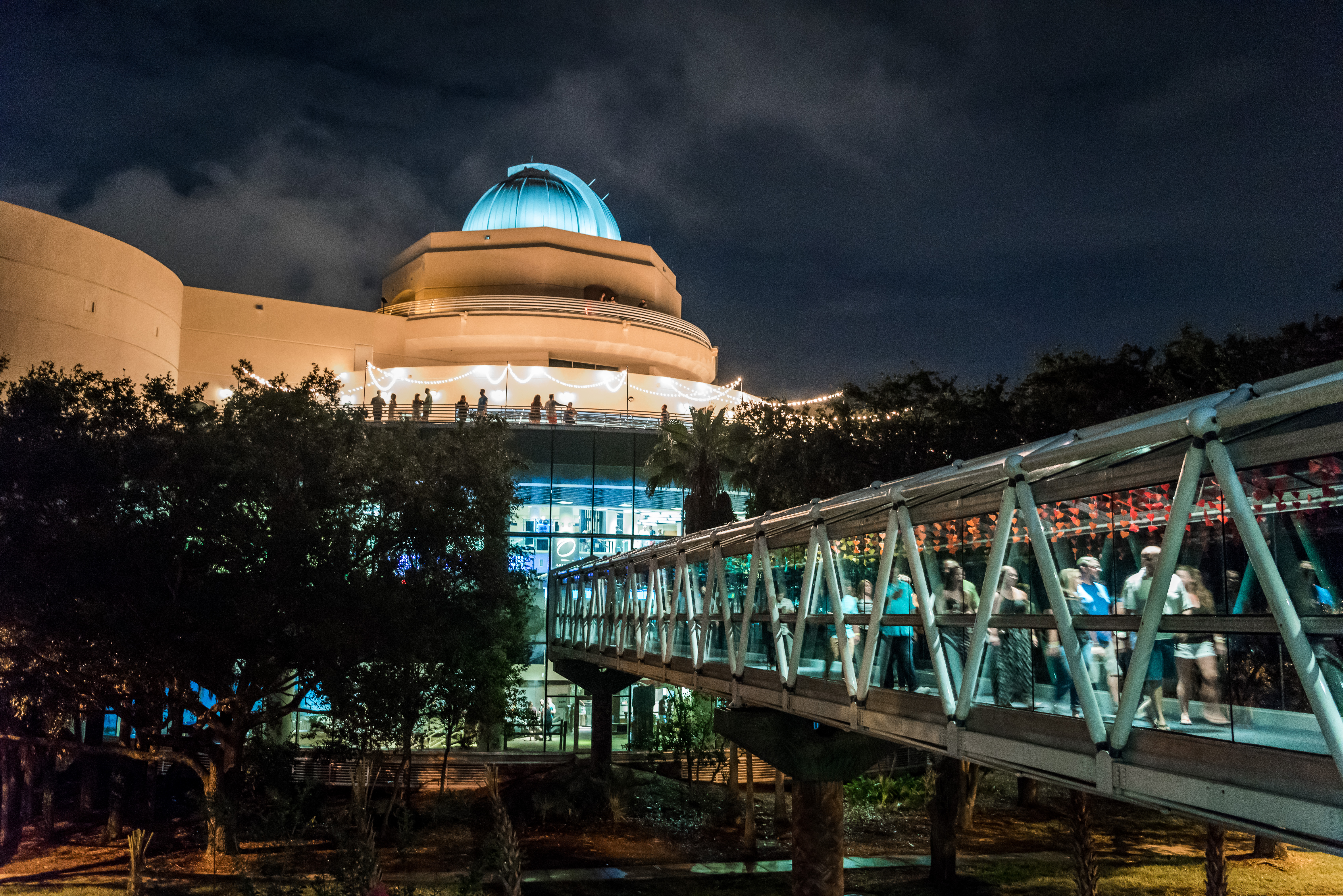 Science Night Live at the Orlando Science Museum | PHOTO: Roberto Gonzalez