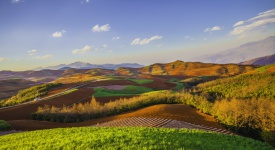 Colorful field in spring.The town of Red Land,DongChuan,YunNan,China.