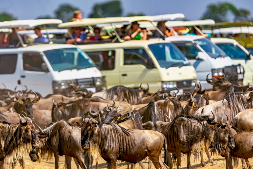 great migration, africa