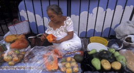 a women with fruits on a road in the village on Isla Mujeres near the city of Cancun on Yucatan in the Province Quintana Roo in Mexico in Central America. Mexico, Isla Mujeres, January 2009.