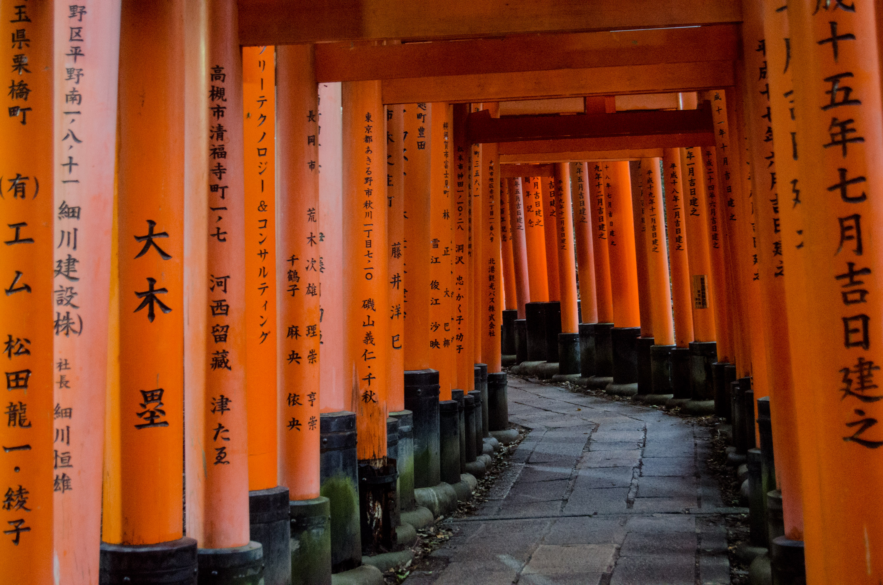 Temple in Kyoto | PHOTO: Laura Studarus