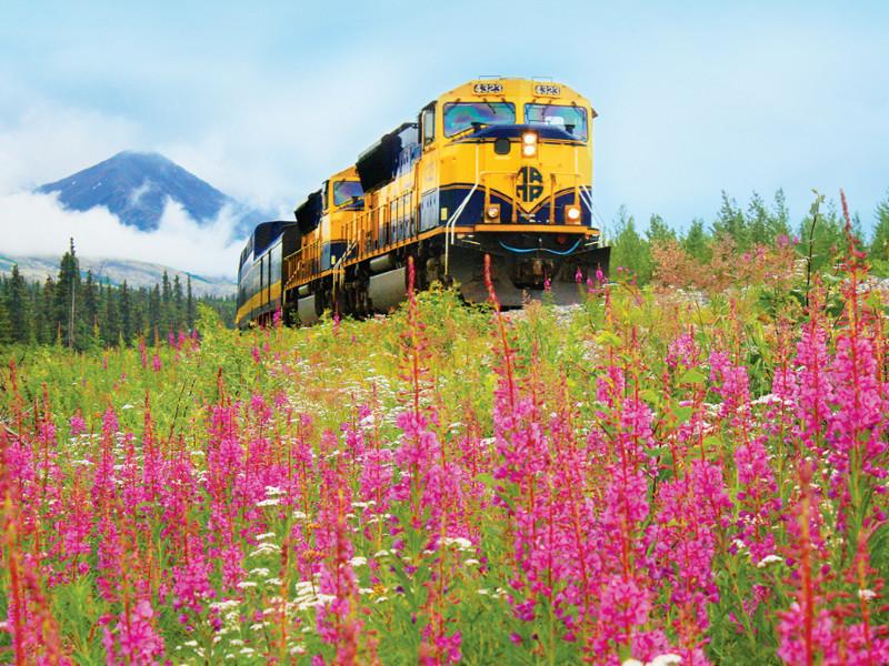 Alaska, rail travel, Denali