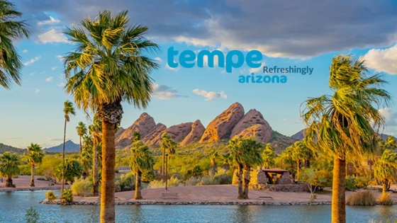 palm trees swaying in desert in front of lake