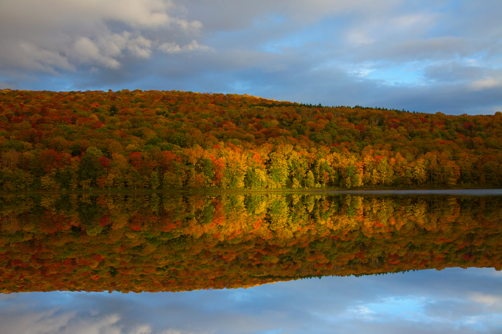 Fall Color Reflected On Lake.