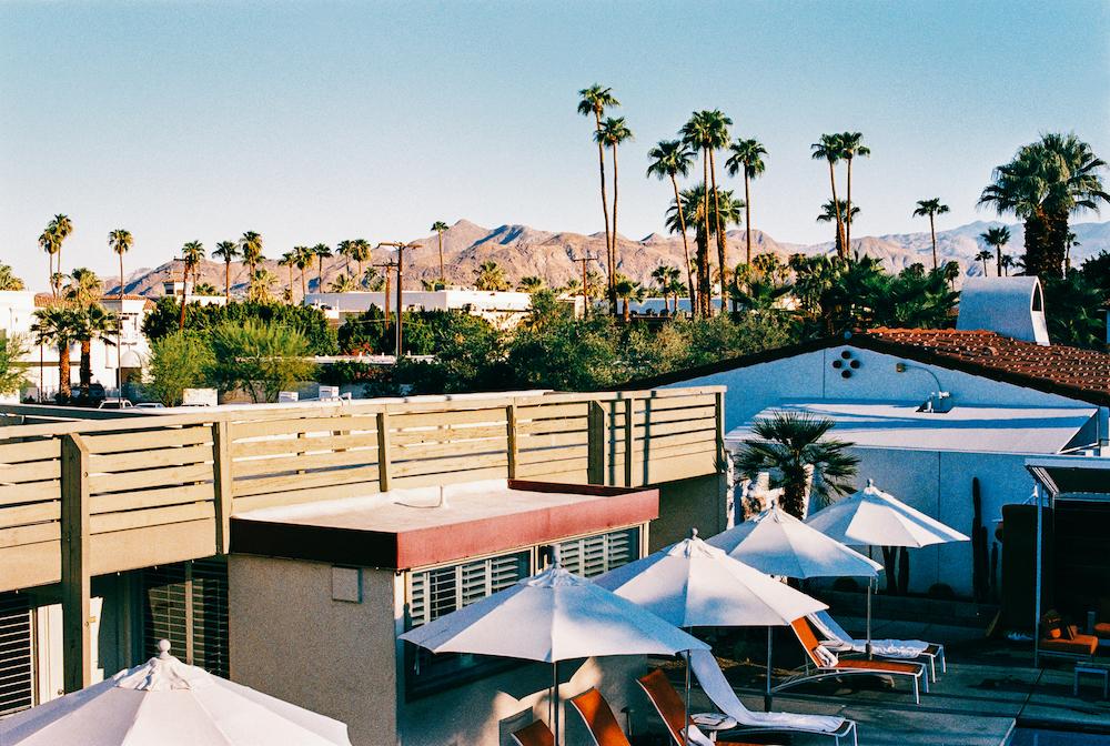 Shot in Palm Springs California on Fuji Superia film stock, natural film grain, no added grain.