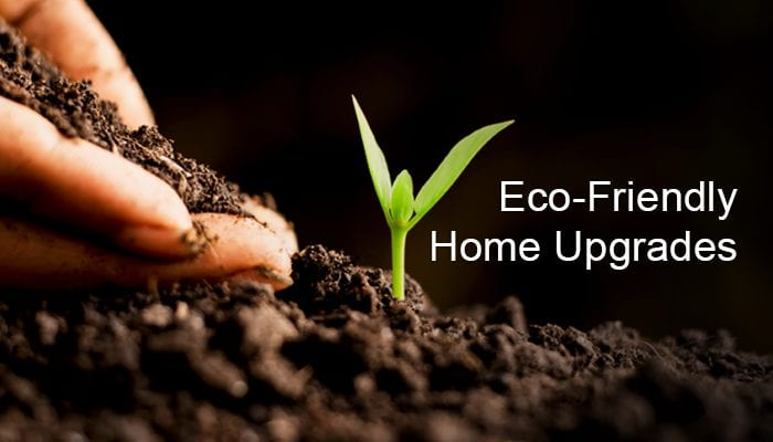 Eco-Friendly Upgrades For a Sustainable Living Space