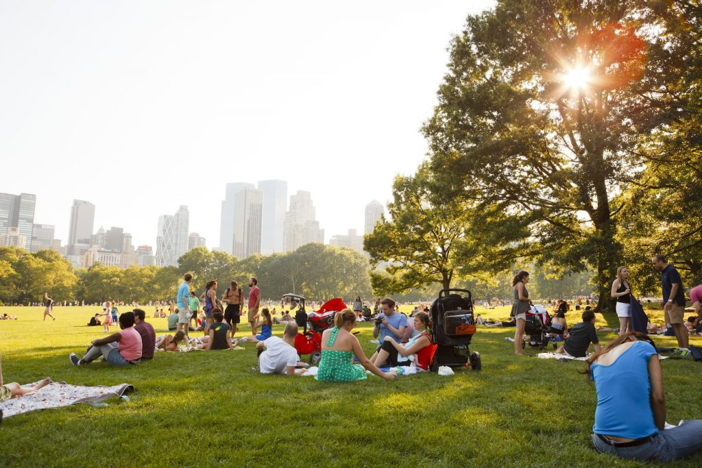People enjoying a beautiful summer day in Sheep Meadow, Central Park. The sun shines through the trees in the late afternoon.