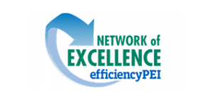 network-of-excellence-logo