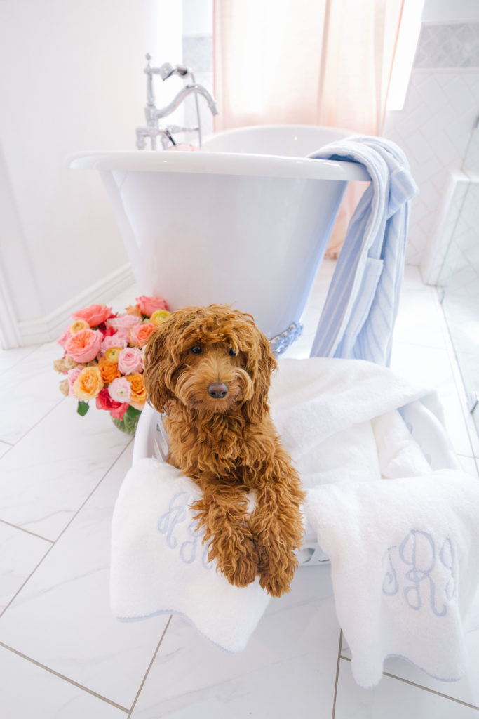Where to buy the cutest monogram towels for your bathroom   Rhyme & Reason