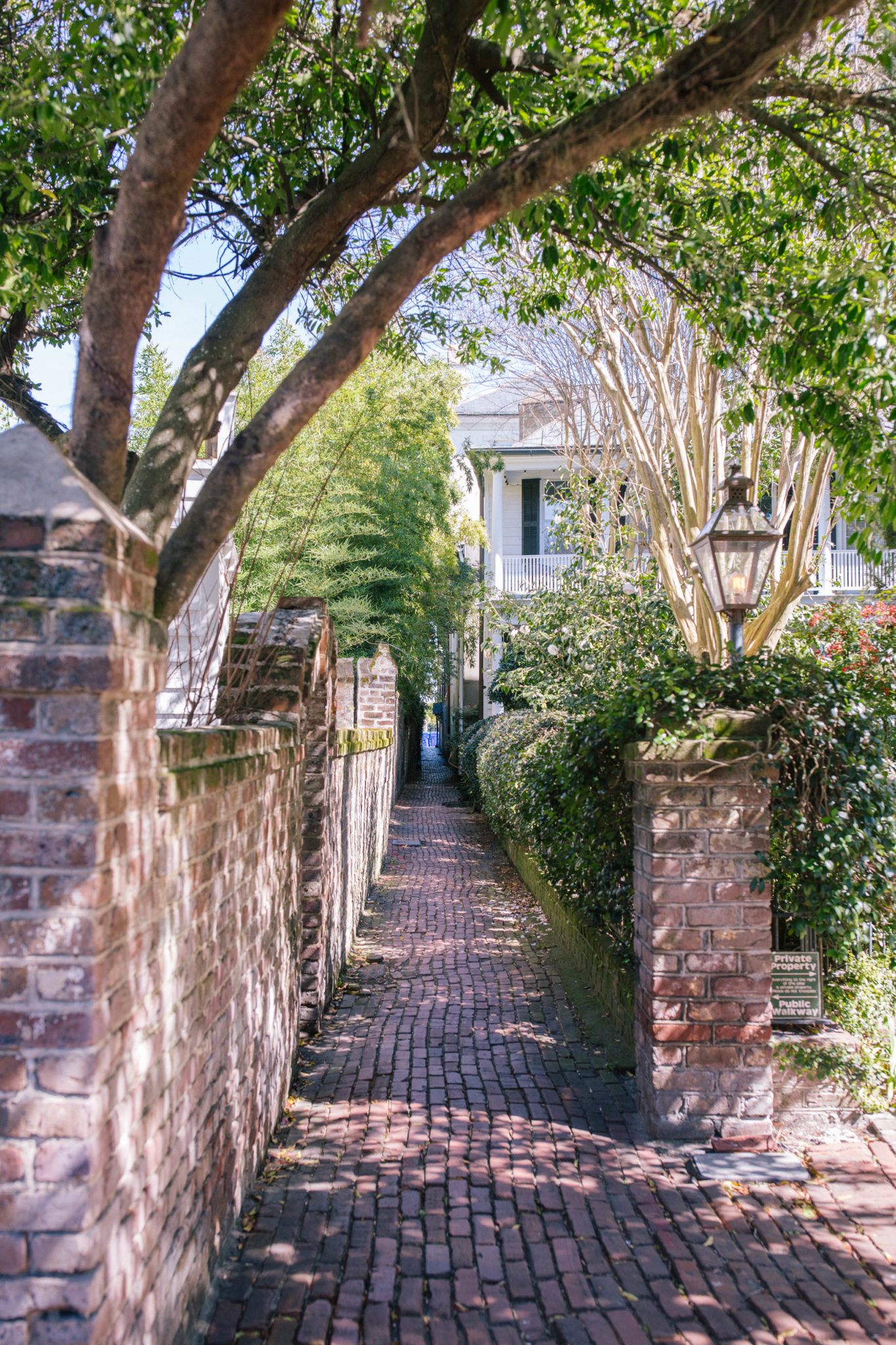 Explore the Most Unique Secret Alleyways in Charleston | Rhyme & Reason