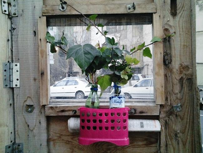 Plant Inside Truck Camper