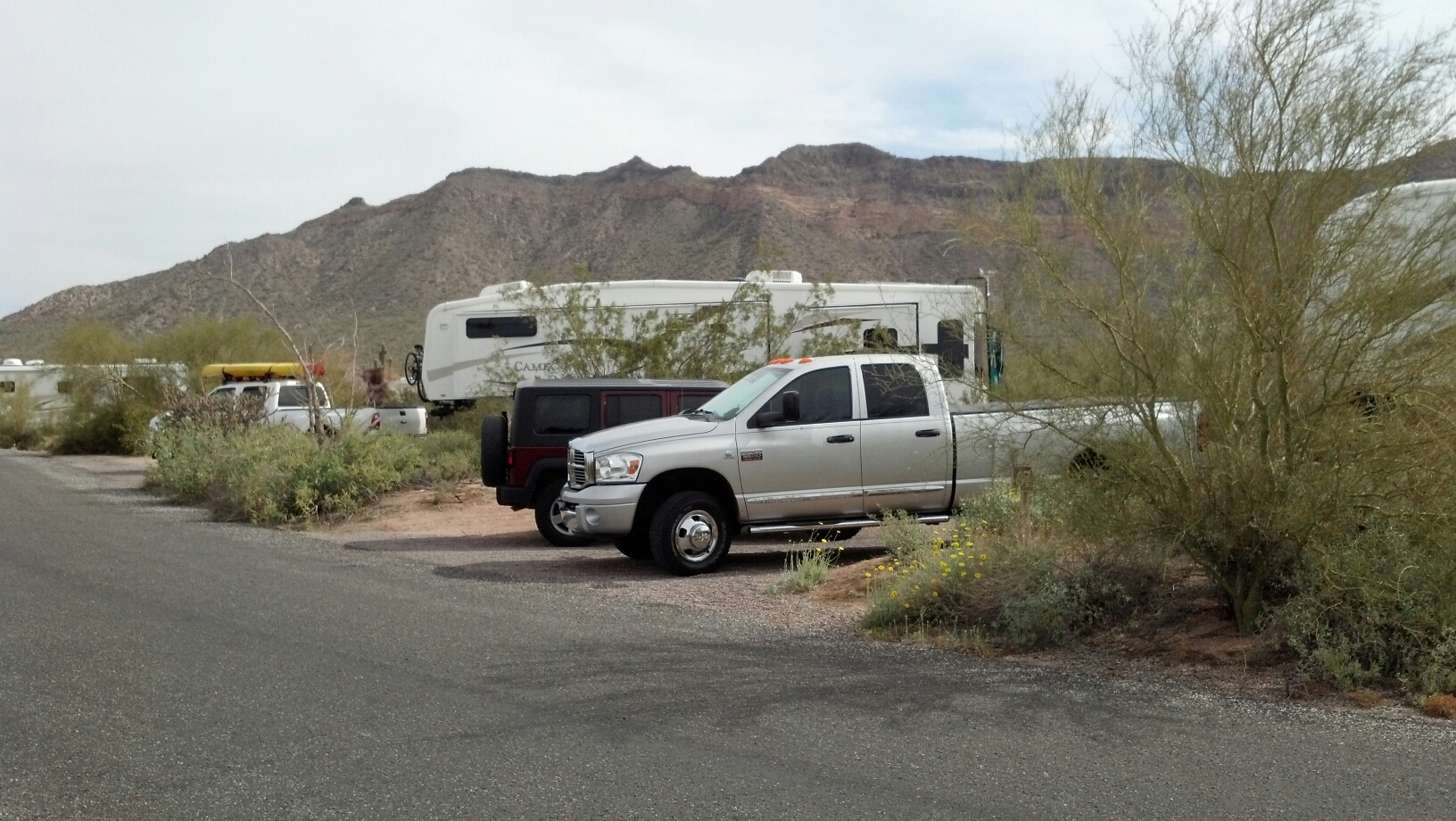 Would You Rv On The Wild Side Rvshare Com