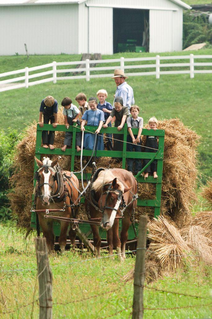 Fall fair events: hayride