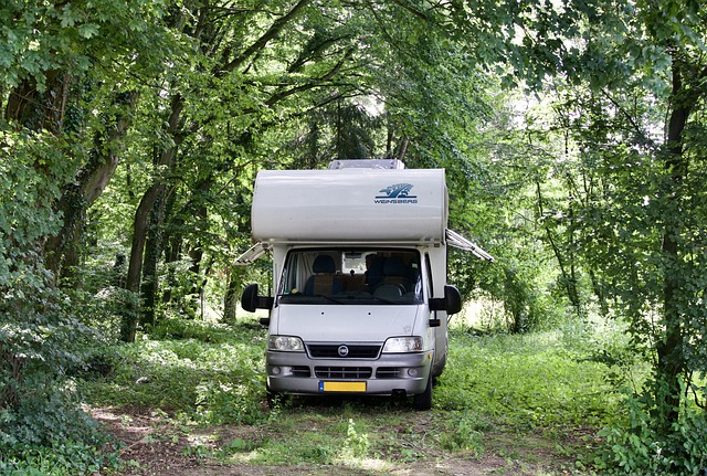 RV parked in grassy clearing