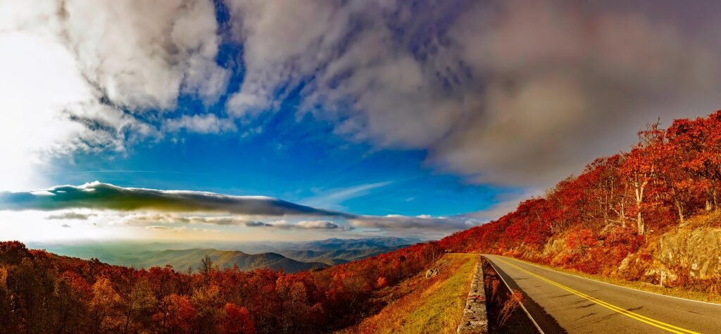 Blue Ridge Parkway surrounded by fall leaves