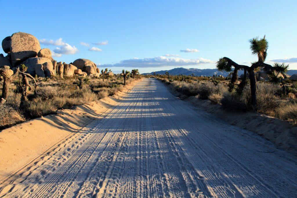 Dirt road through national park