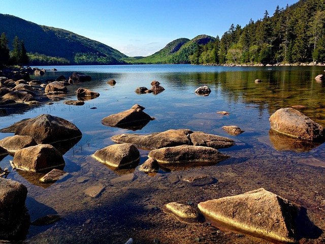 a river in Acadia National Park