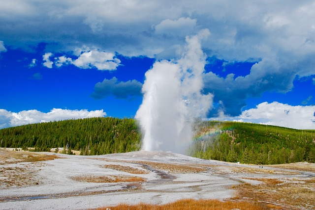 Old Faither geyser at Yellowstone National Park