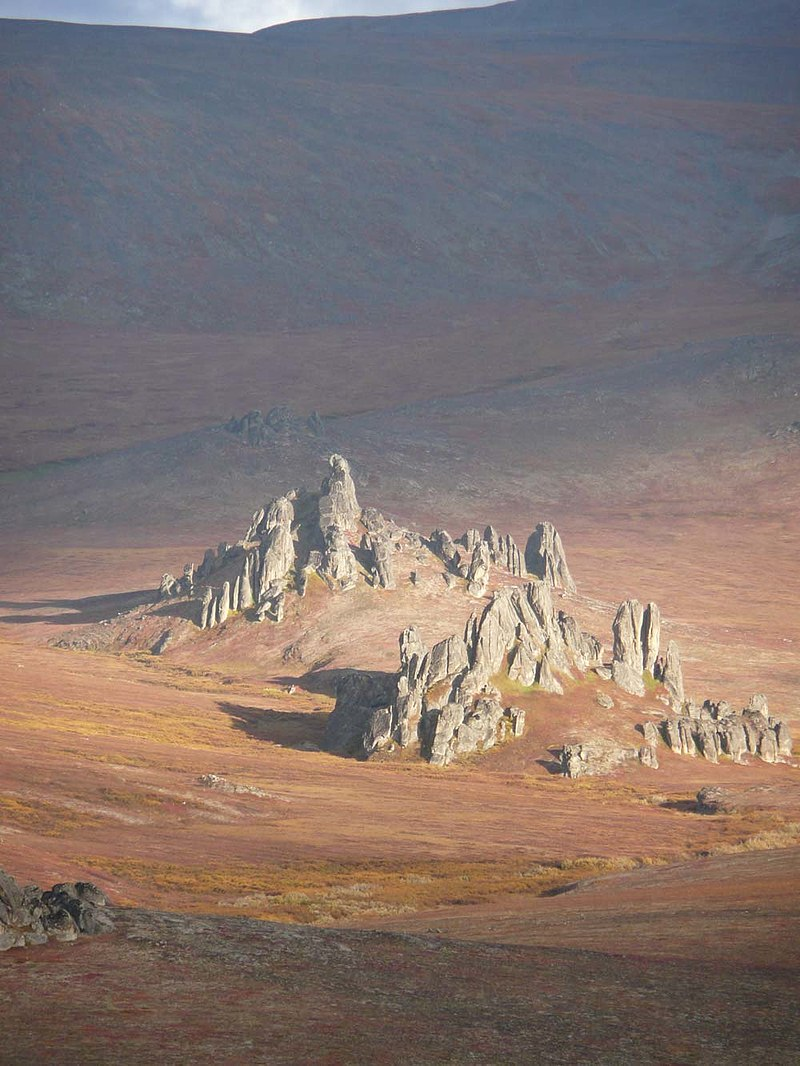 Bering Land Bridge, one of the most remote wilderness areas in the country. Image via the National Park Service