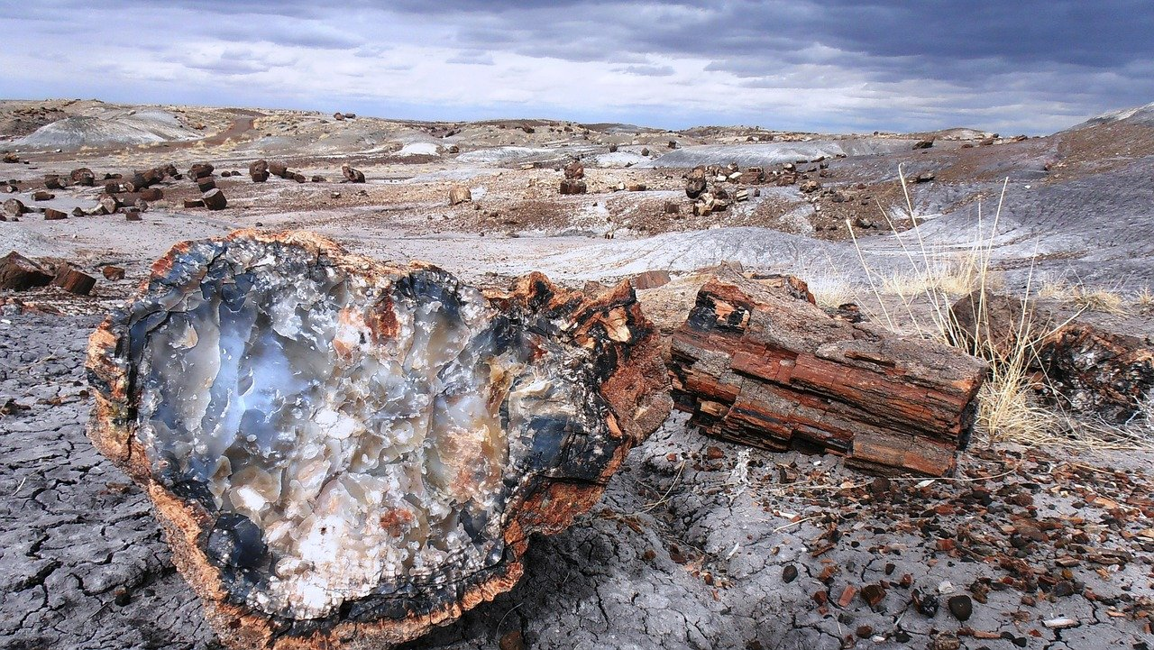 Colorful, fossilized wood characterizes the landscape of Petrified Forest National Park in northern Arizona.