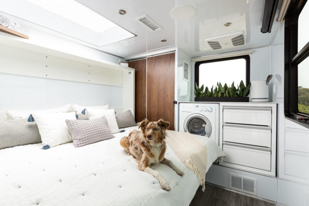 Dog sits on bed inside travel trailer