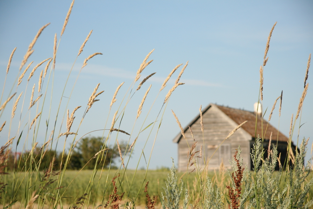 Conner Prairie offers a unique view of what life was like here in the 1800s