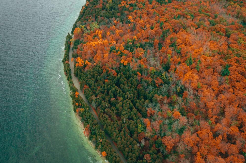 Fall foliage at Peninsula State Park WI