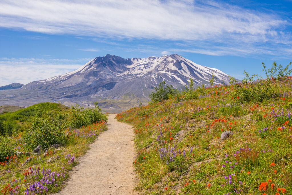 Mount St Helens National Volcanic Monument, Washington