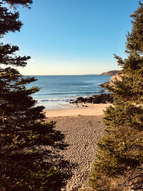 Pathway to Sand Beach in Acadia National park