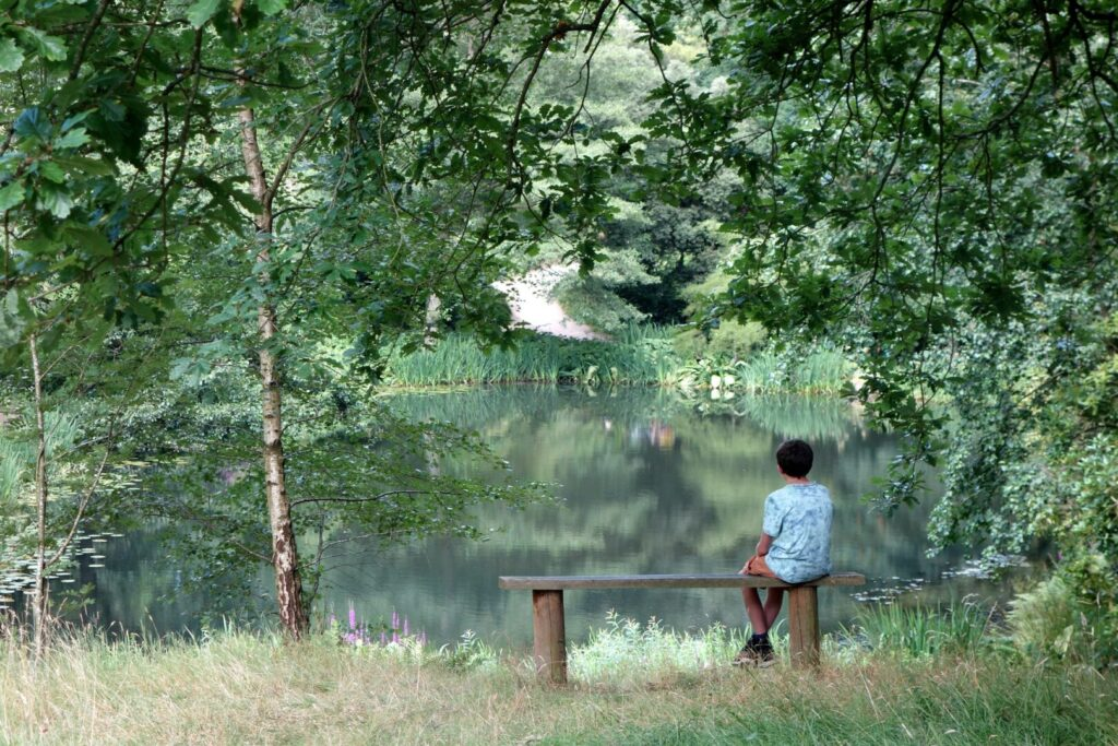 Boy on bench in nature