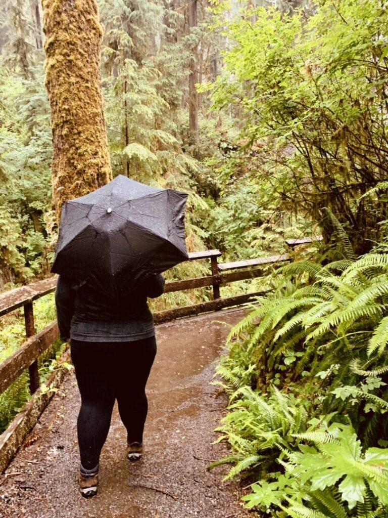Woman walks on hiking trail holding umbrella