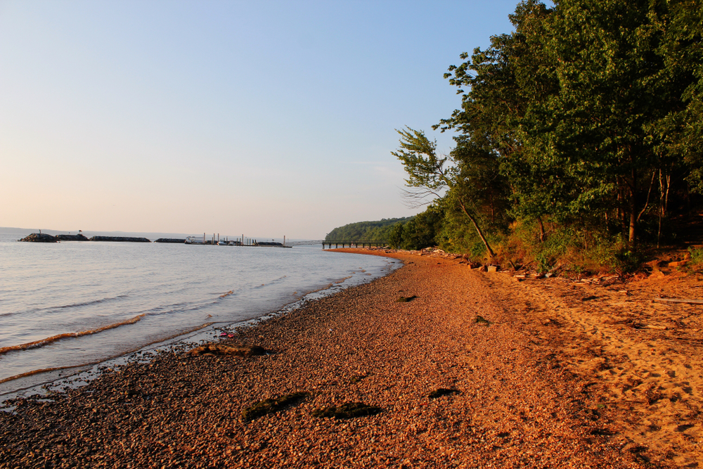 A scenic beach nearing dusk, the water rolling toward a sandy shore bordered with tall green trees.