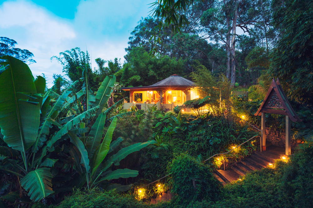 A brightly lit tropical cabana in a forest with dense vegetation and a wooden walkway.
