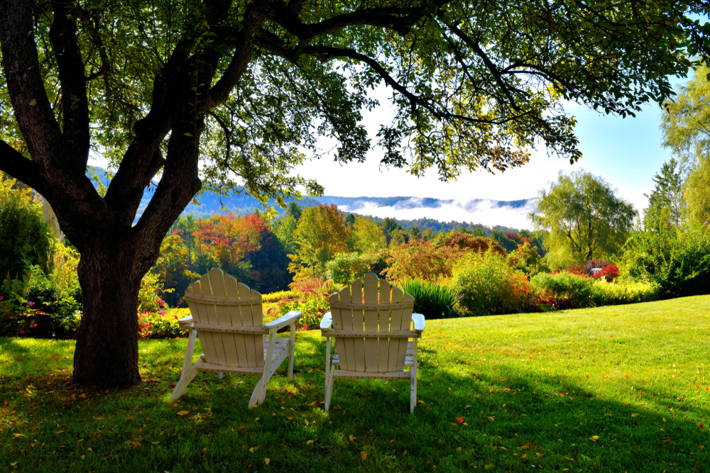 Two chairs sit in shade under a tree looking out over a forest turning to autumn colors.