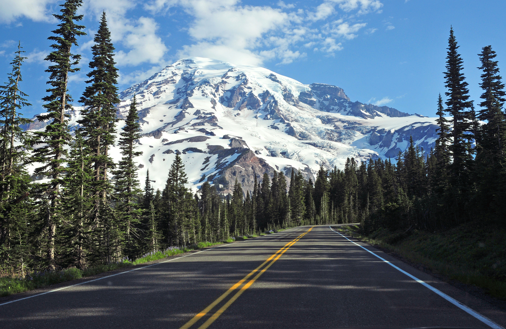 A road  winds through an evergreen forest in the foothills of a huge, snow-covered mountain.