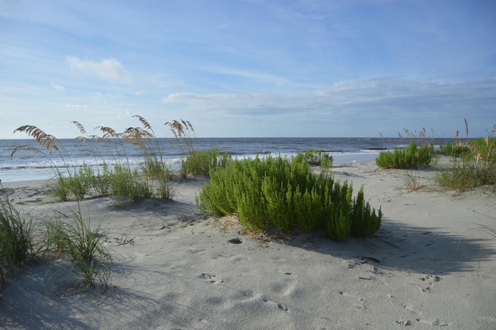 St. Simons Island, GA East Beach