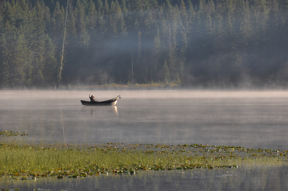 Fog lifts off the water of a lake with floating green plants, a single person in a boat sits with a fishing pole.