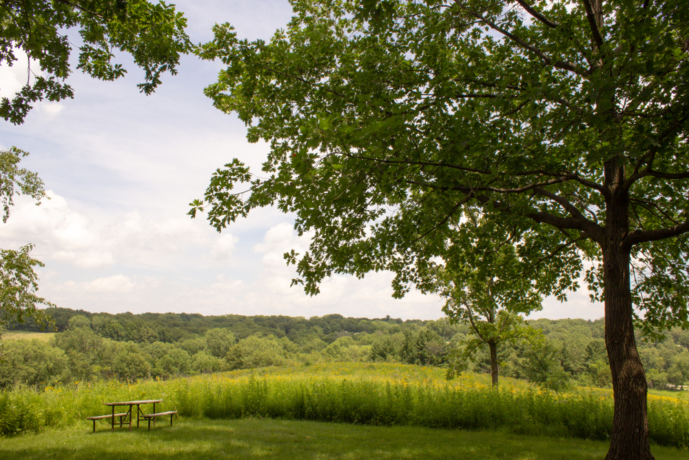 OXFORD, IOWA / UNITED STATES - July 3 2018: Picnic table overlooking meadow in F.W. Kent Park