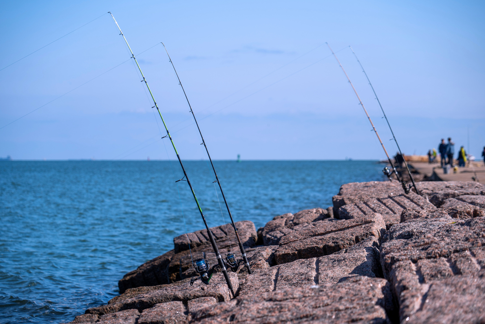 Fishing rods stuck into rocky pavement bricks at the edge of a bright blue body of water. Several people can be seen in the distance.
