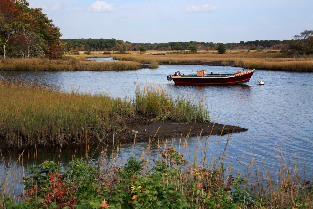 A black and red fishing boat sits in the middle of a marshy pond under a cloudy sky.