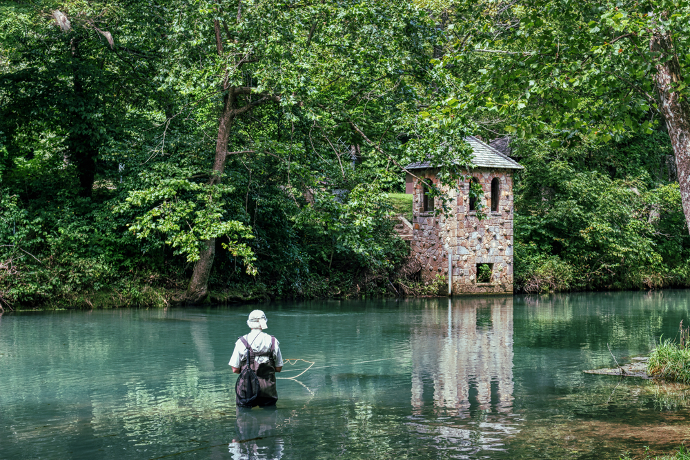 Person fly fishing in front of a riverbank covered in dense trees with a light-colored building on the bank