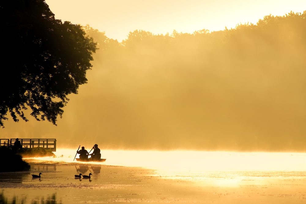Two people in a boat near the shore start rowing into foggy waters, colored gold by the rising sun.